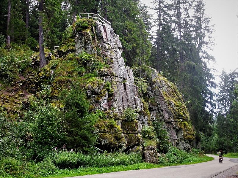 Sentiero e fitta foresta vicino a Villingen