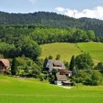 Campi nei pressi di Gutach