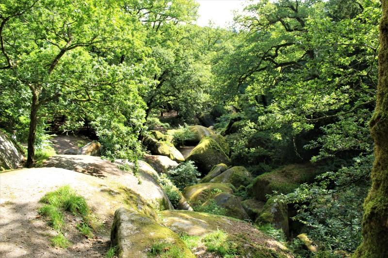 La Foresta di pietra di Huelgoat