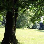Locronan - Locronan-giardino-della-villa.jpg