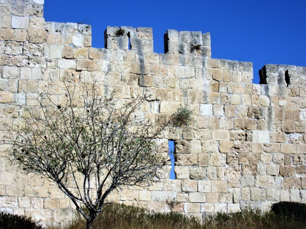 Monte-Sion - Gerusalemme-Mura-di-Gerusalemme.jpg