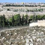 Monte-degli-Ulivi - Gerusalemme-tombe-distrutte.jpg