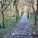 Vercurago - Santuario-San-Girolamo-scala-santa-4.jpg
