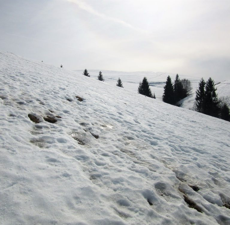 Pizzo-Formico - Pizzo-Formico-discesa-con-neve.jpg