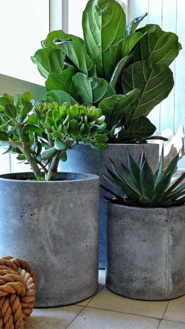 Indoor Herb Garden http://homesthetics.net/25-awesome-indoor-garden-planting-projects-to-start-in-the-new-year/
