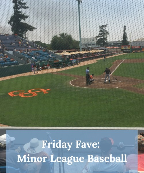 We went to our local Minor League Baseball Game and had such a great time! Highly recommended outing for a family with young kids. Check out why we loved it.