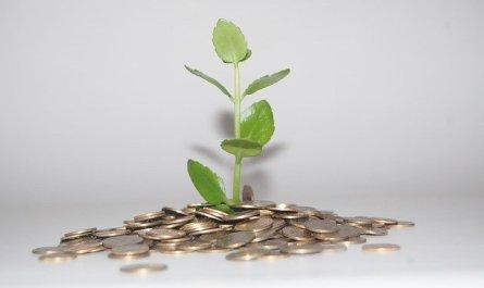 simple ways to grow your portfolio with foreign exchange - Simple Ways To Grow Your Portfolio With Foreign Exchange