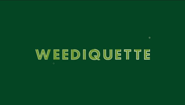Image result for weediquette season 3
