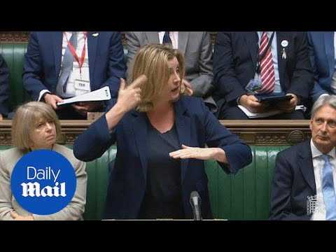 Penny Mordaunt is first MP to use sign language in the Commons - Daily Mail