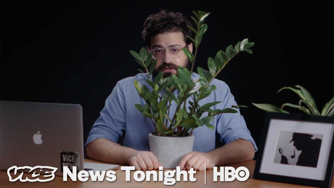 The Internet Thinks It Knows Who Wrote That Anonymous Op-Ed (HBO)