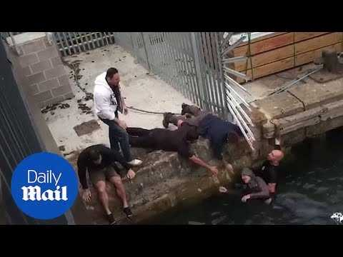 Yacht workers jump into harbour to rescue elderly man