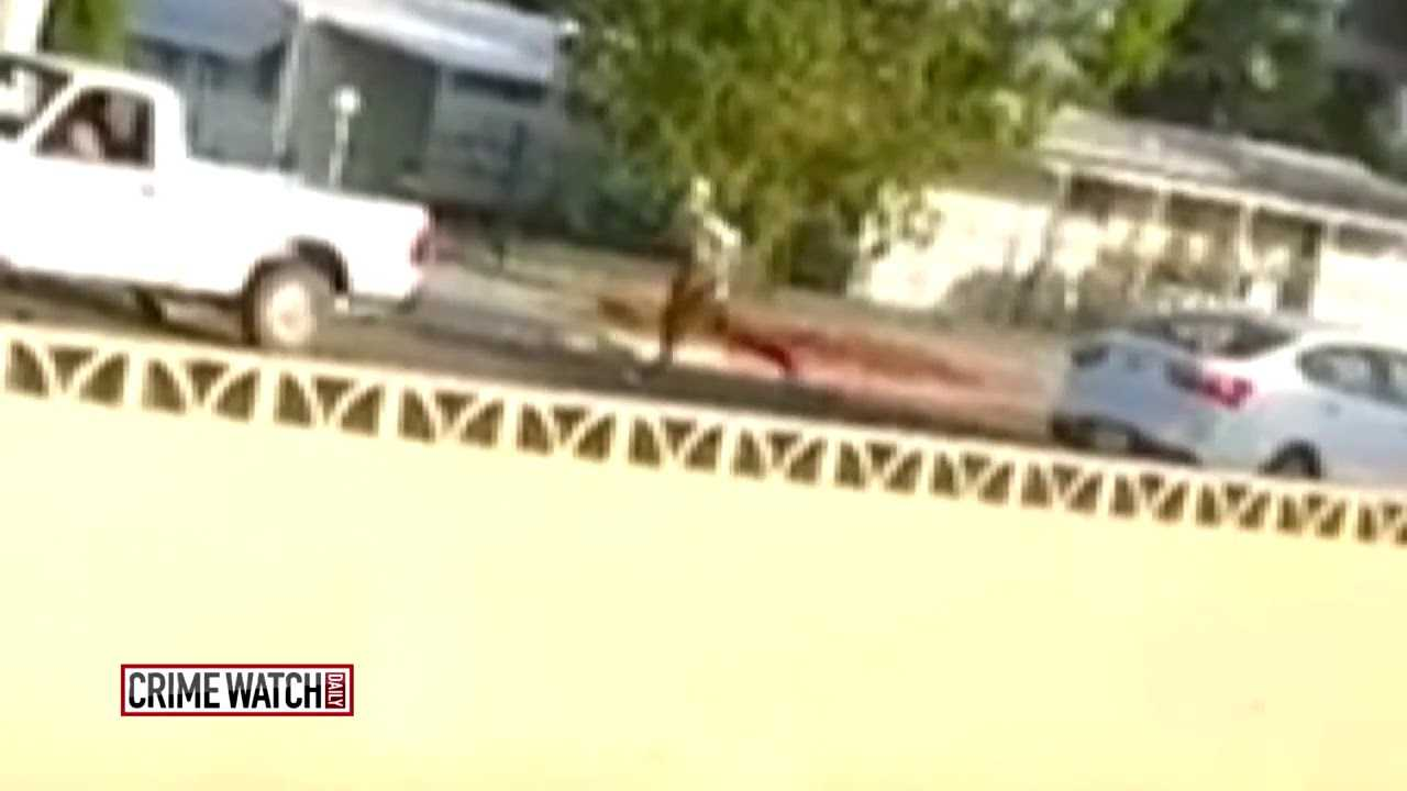 Road rage: Man hit by his own car goes flying