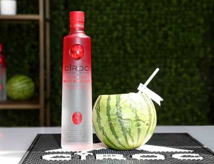 COACHELLA, CALIFORNIA - APRIL 14: A general view of Ciroc at the Republic Records Celebrates Their Class Of 2019 In Coachella Valley at Zenyara on April 14, 2019 in Coachella, California. (Photo by Joe Scarnici/Getty Images for Republic Records)