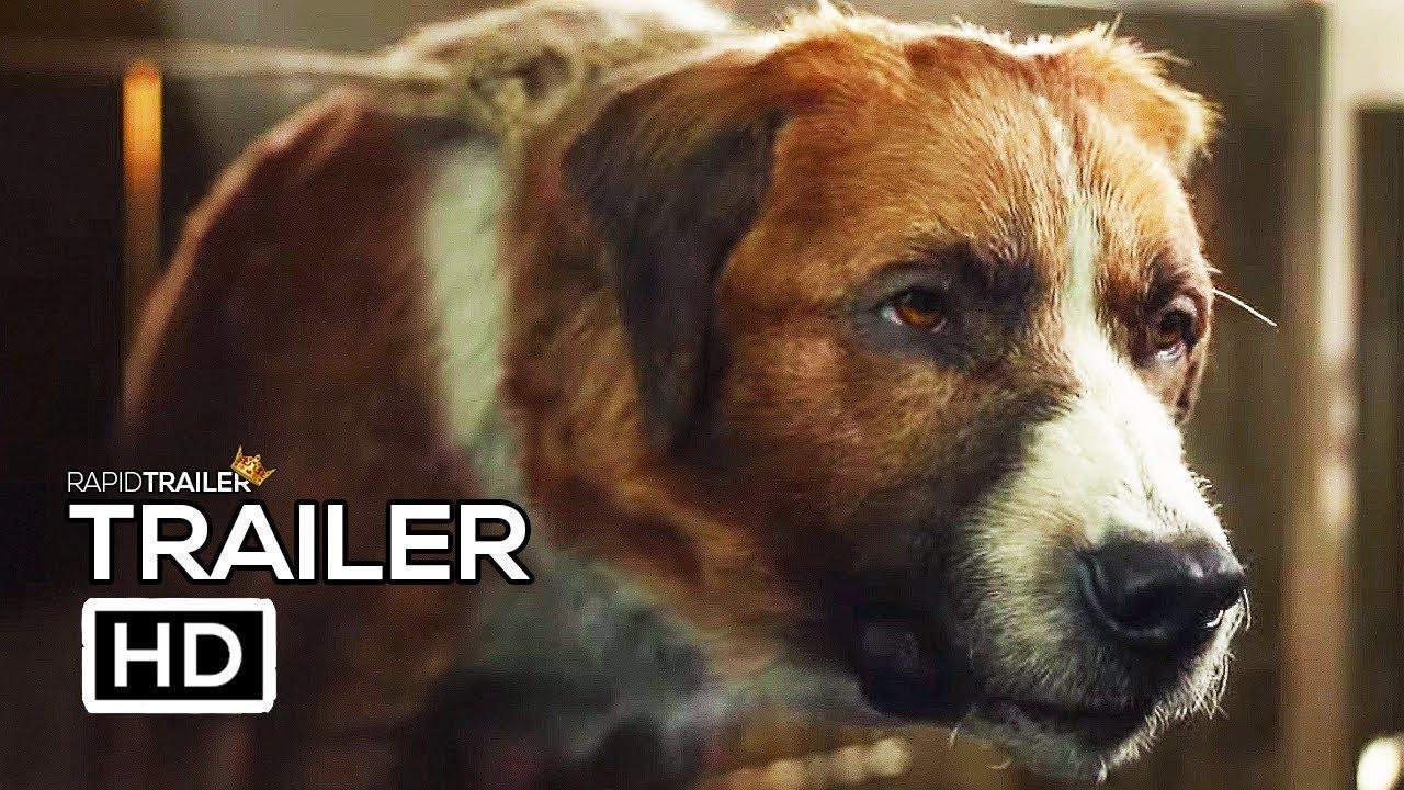 CALL OF THE WILD Official Trailer (2020) Harrison Ford, Karen Gillan Movie HD