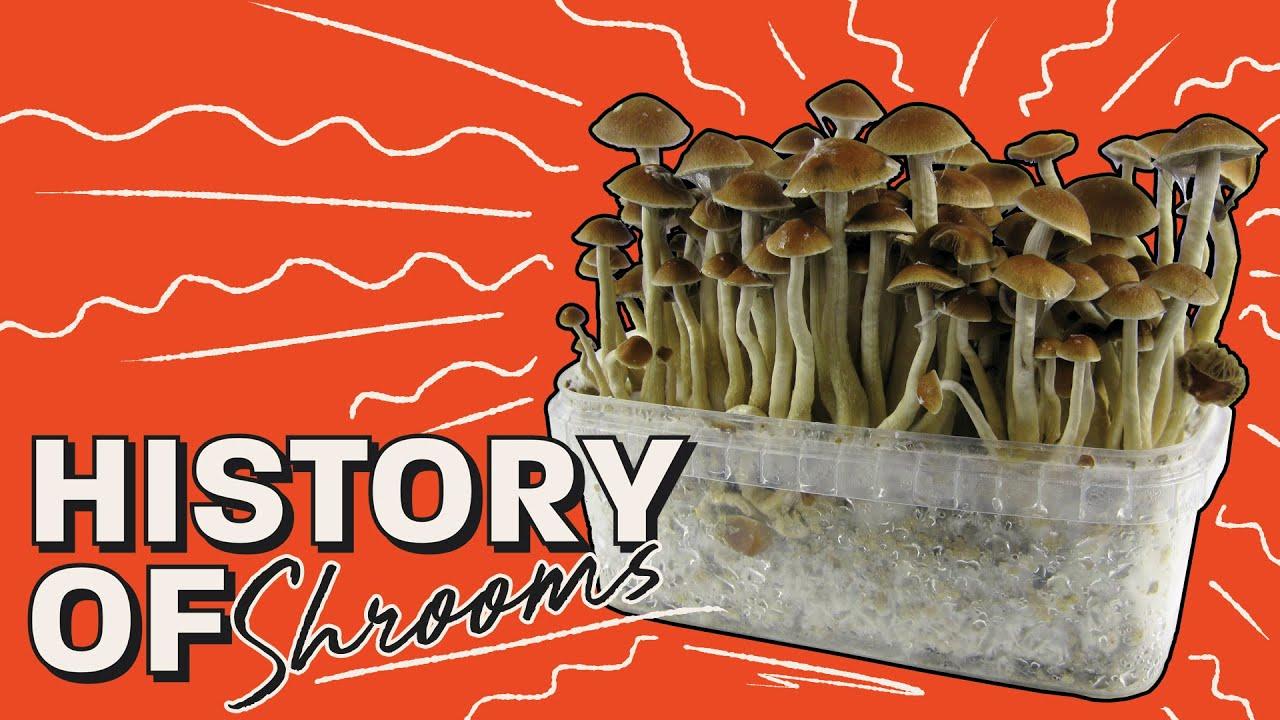 History of Magic Mushrooms