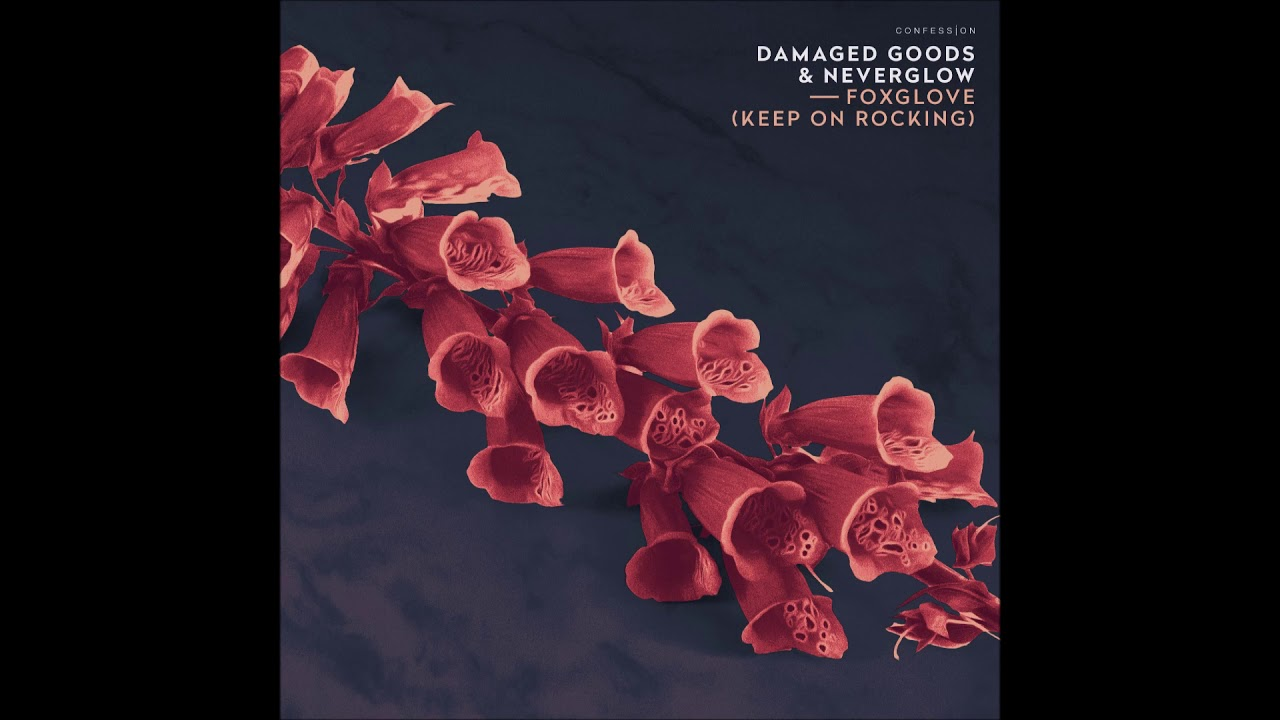 "Damaged Goods & NEVERGLOW - ""Foxglove (Keep On Rocking)"" OFFICIAL VERSION"