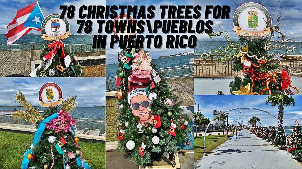78 Christmas Trees for 78 Towns of Puerto Rico   78 Arboles de Navidad en Cataño Puerto Rico