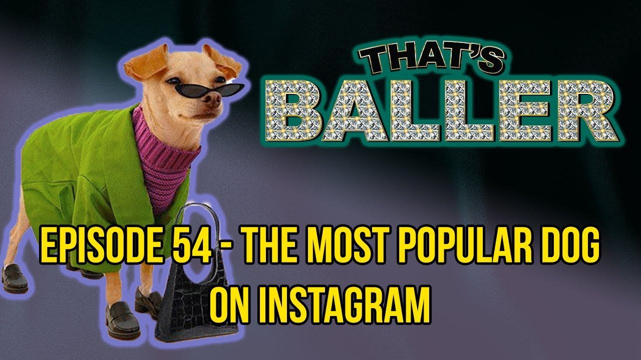 That's Baller - Episode 54 - The Most Popular Dog on Instagram