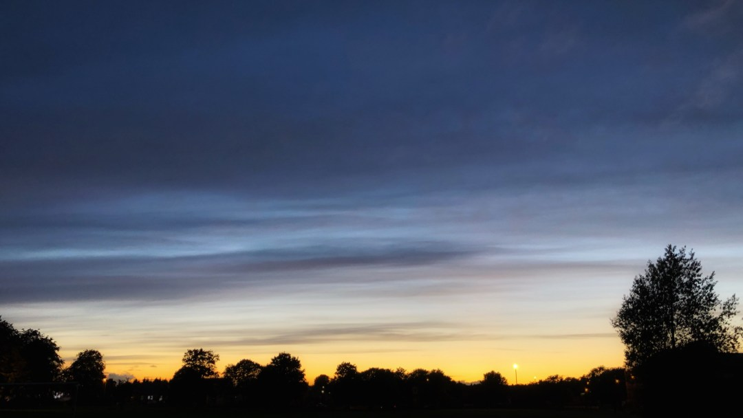 Dusk sky with silhouettes of trees.