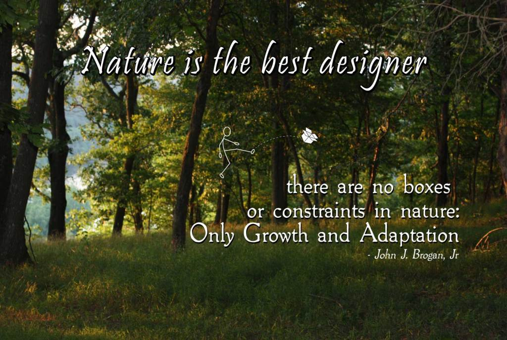 nature is the best designer image