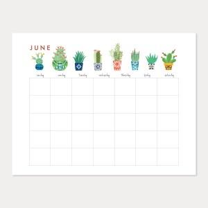 summer cactus june