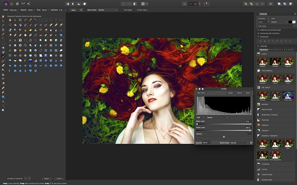 Serif Affinity Designer 2019 Download