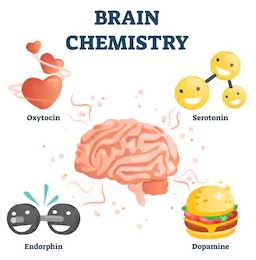 The main pleasure-related neurochemicals: Oxytocin, Serotonin, Endorphin, Dopamine. Gamify your productivity to take advantage of them