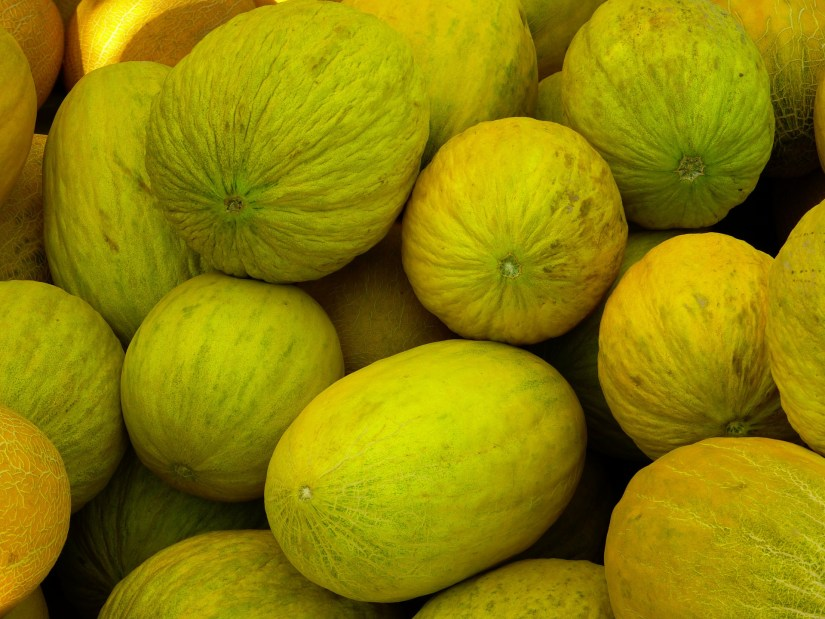 A good quality casaba melon will be fairly large and firm with a small amount of softness at the stem end.