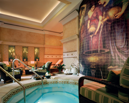 ritz-carlton-members-club-sarasota-spa-whirlpool