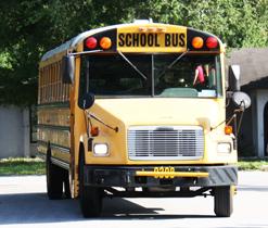 teresa-and-bus