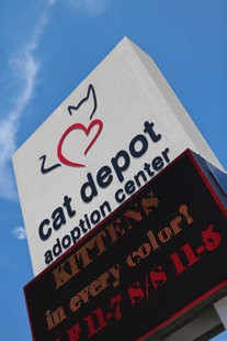 cat-depot-sign