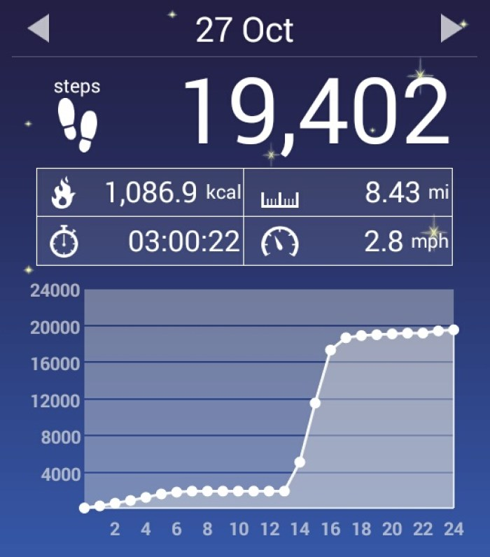 Get Results: pedometer screen shot
