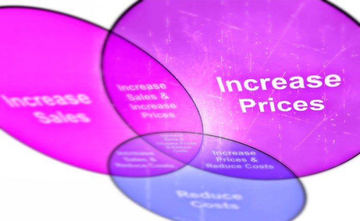Get Results: increase profits through pricing