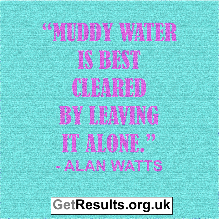 Get Results: muddy water is best cleared by leaving it alone