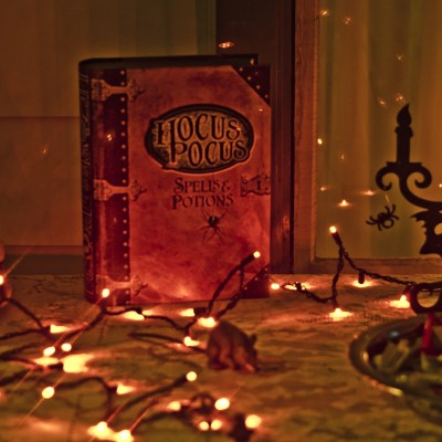 14 Hocus Pocus themed items for Halloween