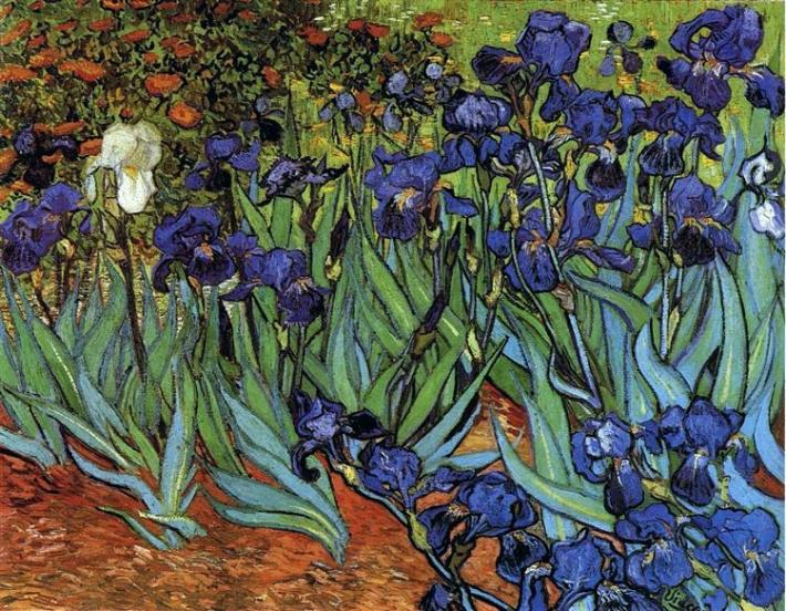 Irises | Painted by Vincent van Gogh | 25 Most Expensive Paintings in the World