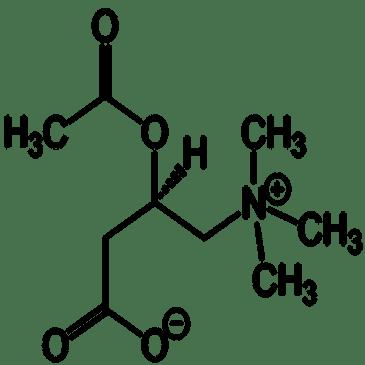 Amino Acids | Get Smart! Nootropics
