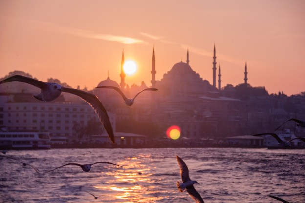 Photograph of seagulls in front of the Istanbul skyline at sunset.