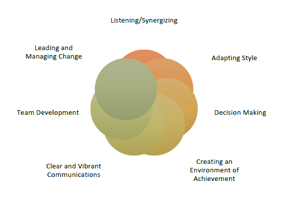 Leadership Fusion model