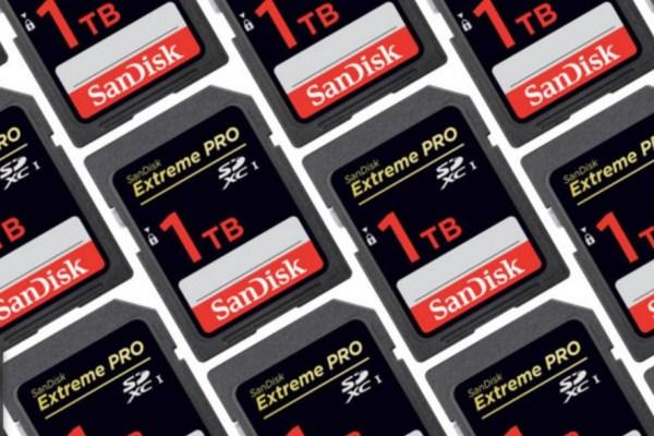sandisk 1 tb SD card