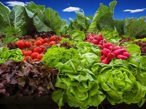Can the Mediterranean Diet Reverse Disease