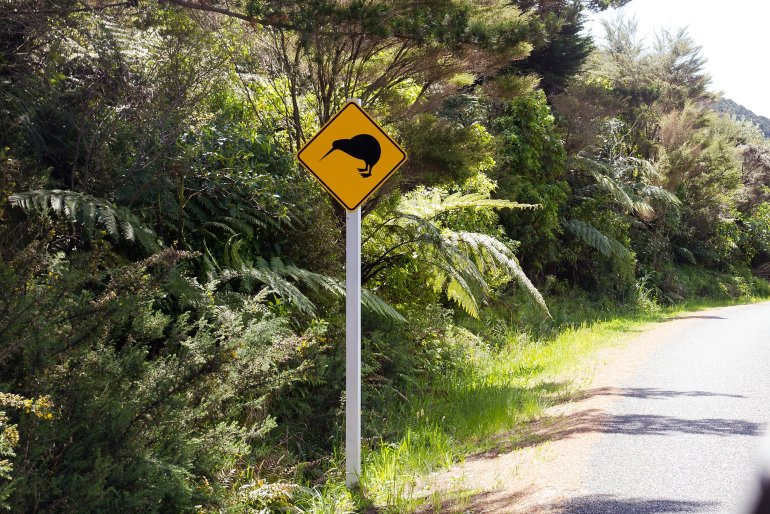 Kiwi sign on side of the road
