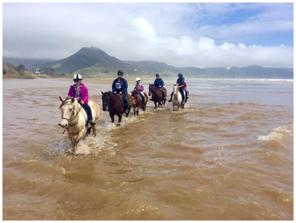 Ahipara Horse Treks