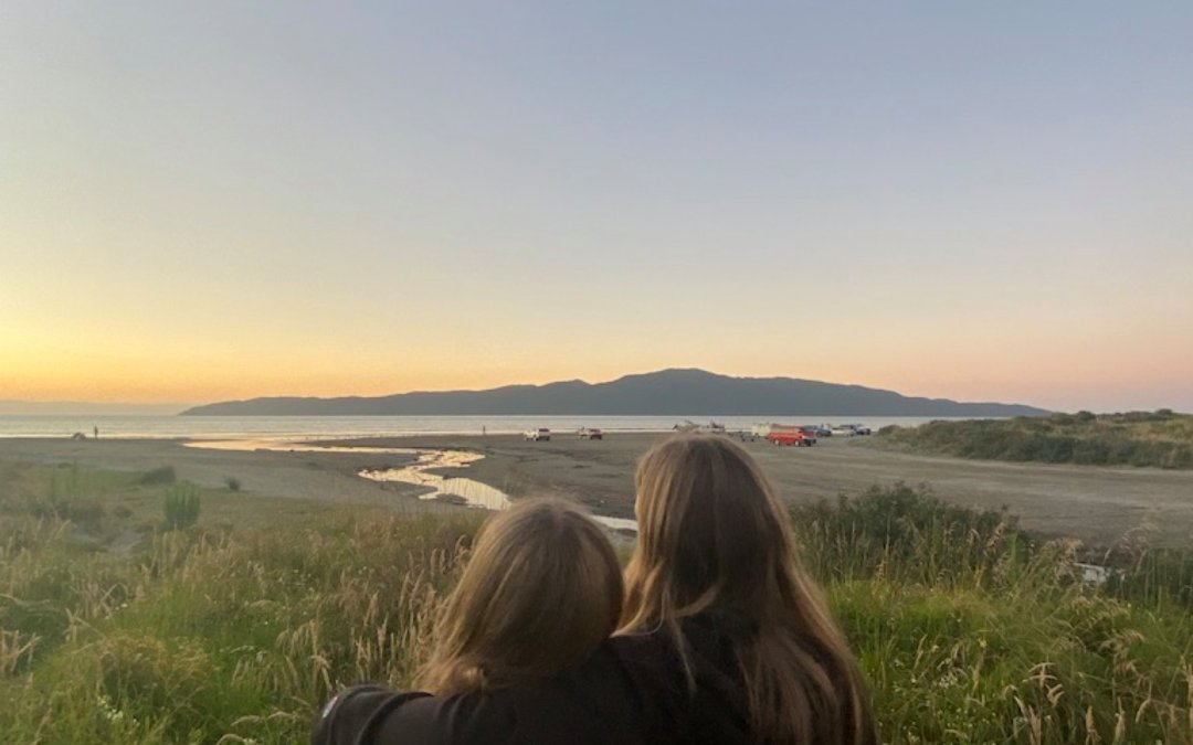 Pick a path – Auckland to Wellington two ways
