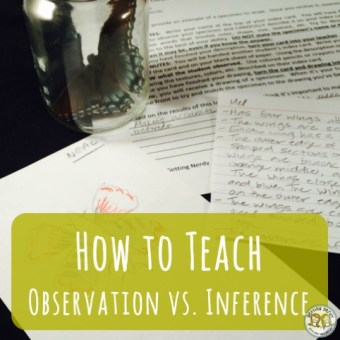 Lesson Plan: Observation and Inference Activity