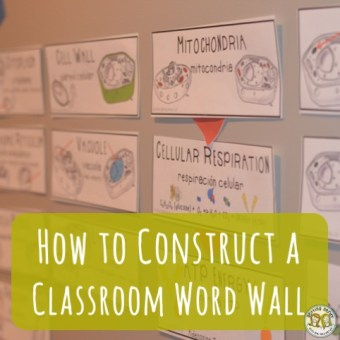 Teacher Tools: Word Wall Construction