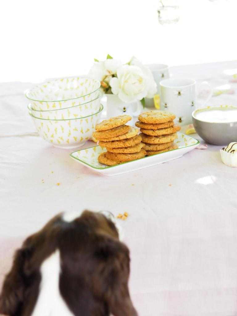 Afternoon Tea With Sophie Allport