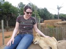Snuggling a lion