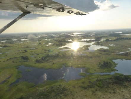 Flight over the Okavango