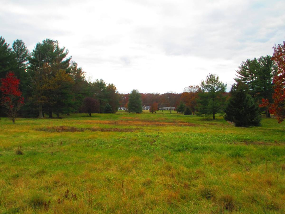 Stewarding Our Lands: Historical Preservation in Gettysburg